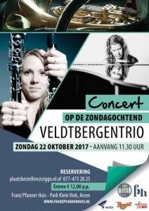 FP A5 concert Veldtbergentrio