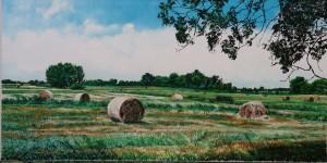 De hooi-oogst[2]